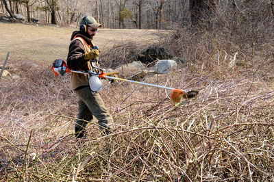 Clearing brush from the pasture electric fence